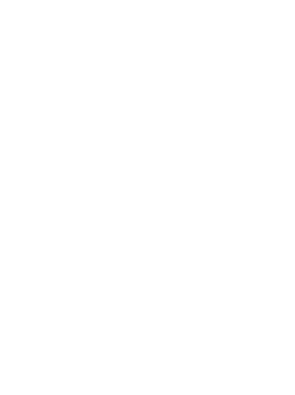 VVIP Events